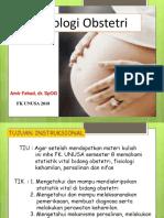 fisiologi kehamilan UNUSA.pptx