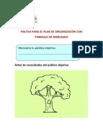PAUTAS_PARA_EL_PLAN-producto-1.docx