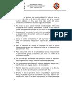 Oraganizacion de Voluntariado - Giannina Paredes