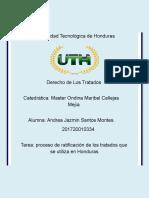 TAREA DERECHO DE LOS TRATADOS .docx