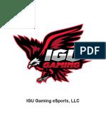 Manager de Redes Sociales - IGU Gaming