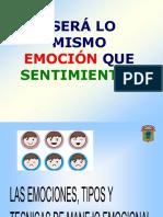 1.2. Las Emociones