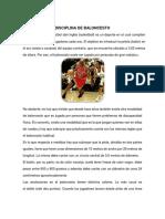341769902-Disciplina-de-Basquet-2.docx