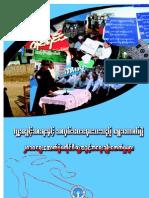 2010 Election Burmese