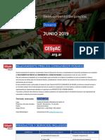 Relevamiento de Precios CESyAC JUNIO 2019 · Rosario