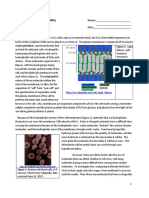 20-Cell-Membrane-Permeability-Lab-guide-and-worksheet1.pdf