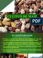 Cultivo de Maiz 2015_agricola