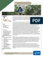 Indonesia Factsheet