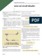 le perdite di carico nei circuiti idraulici.pdf