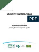 Gerenciamento Economico Da Producao