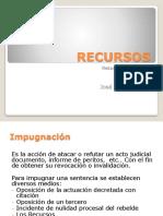 PPT Resumen Recursos
