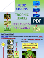 12 - Food Chains Trophic Levels and Ecological Pyramids - Power Point.pptx Autosaved (1)