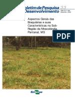 Brachiaria ruziziensis.pdf