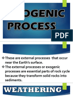 Exogenic and Endogenic Process
