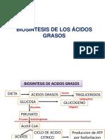 acidos g.
