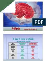 Ganotherapy Hindi - English.pdf