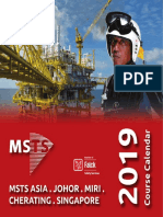 msts_2019-calendar_ws.pdf