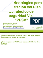 Roles Pesv