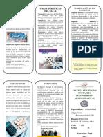 TRIPTICOS-DE-JOZ-2.docx