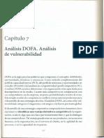 Serna - Análisis DOFA y de Vulnerabilidad