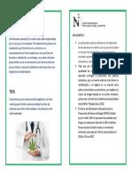 Diptico Comu3 (1)1