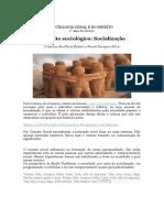 Conceitos sociológico_ socialização