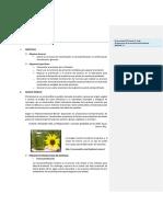 380150742-Informe-de-laboratorio-n-9BORRADOR.docx