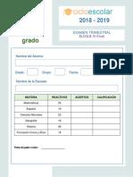 Examen Trimestral Sexto Grado Bloque3 2018-2019