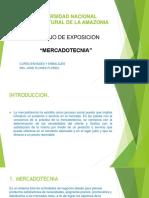 UNIVERSIDAD-NACIONAL-INTERCULTURAL-DE-LA-AMAZONIA.pptx