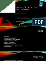 Administración de La Calidad Del Software