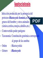 blastocitis