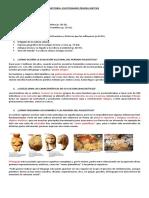 HISTORIA Cuestionario Prueba Sintesis