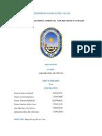 Informe de Dilatacion