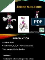 Clase Ácidos Nucleicos
