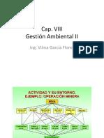 CAP VIII Gestion Ambiental II