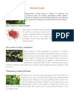 Factores Que Afectan El Crecimiento Bacteriano