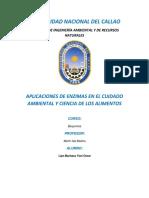 ENZIMAS BIOQUIMICA.docx