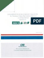 Lineamientos de Seguridad y Salud en El Trabajo Para Provedores y Contratistas Anexo S