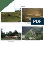 123proyecto de ecologia.docx