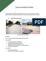 PROYECTO PATOLOGIA EN PAVIMENTOS RIGIDOS.docx