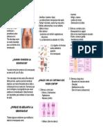 folleto menopausi