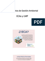 3.IGA- ECA y LMP