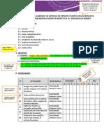 Modelo Plan de Trabajo 01