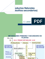 Productos_Naturales.ppt