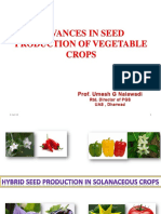 Seed Prodtn of Veg Crops