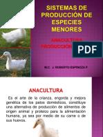 Anaculturaproducciondepato 150723024825 Lva1 App6891