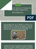 Pérdida de Suelos y Paisajes Por Establecimientos Industriales