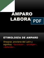 AMPARO LABORAL.1.pptx