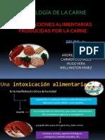 Intoxicaciones Alimenticias Producidas Por La Carne