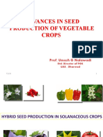 seed prodtn of veg crops.pptx